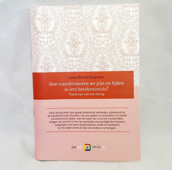 Boek lezing Lama Michel Hoe transforemeren we pijn en lijden in iets betekenisvols